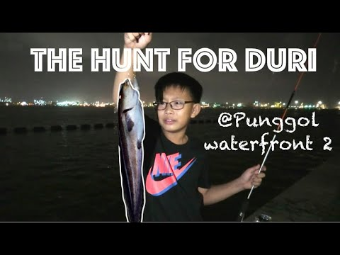 The Hunt For Duri @ Punggol Waterfront 2 S1Ep17 Singapore Fishing