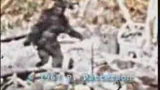 bigfoot patterson tiagopsc thumbnail