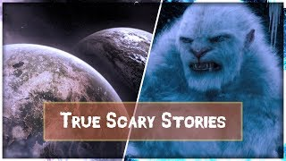 2 True Scary Stories - Camping-Creature & Glitch In The Matrix Stories