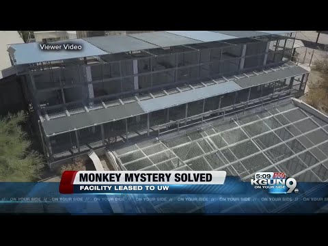 Mesa monkey facility mystery solved