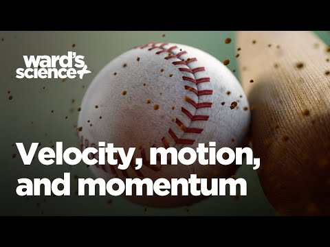 How to Use a Ballistic Pendulum to Study Velocity, Momentum, and Motion