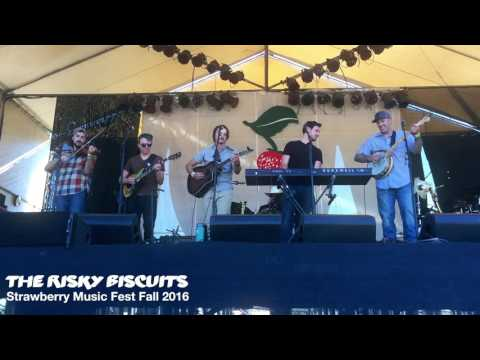 The Risky Biscuits - LIVE At Fall Strawberry Music Festival 2016