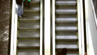Videoclip (Alek Stark - TB Love)