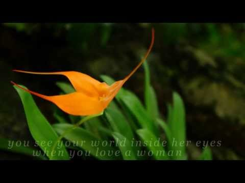 Journey-When You Love A Woman / Lyrics / Steve Perry