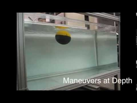 Highly Maneuverable Smooth Underwater Robots