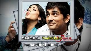 ♡ Enaku Enaku Avan Romba Pidikkum ♡ Whatsapp Love Status Video Tamil ♡
