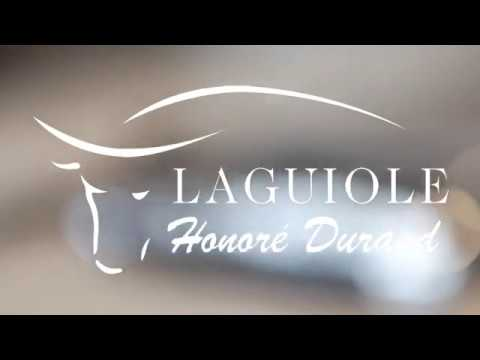 Laguiole Honoré Durand - Everyday Carry