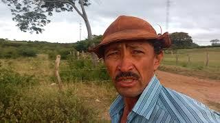 Baixar José Francisco Pereira cidadão da região de guirapa' reclama prejuízo  com a linha de transmissão