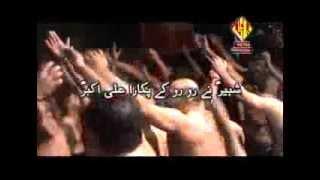 Ali Akbar   Pukara Ali Akbar Exclusive Noha Album 2013-14   Wajhi Hassan Zaidi