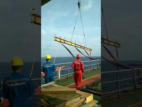 Offshore pedestal crane