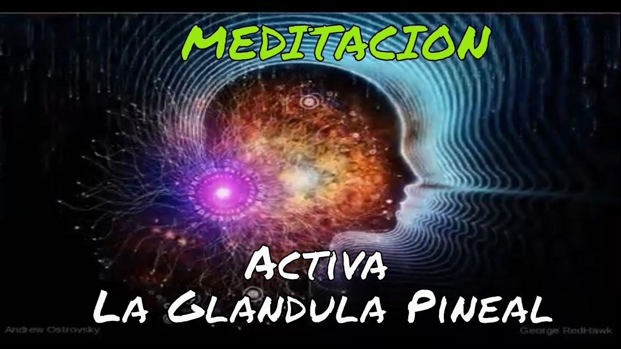 Música Para Activar La Glándula Pineal Y Pituitaria Youtube