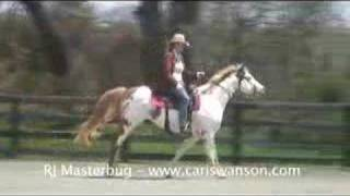 "RJ, Star Horse from ""Hidalgo"""