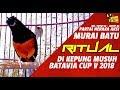 Batavia Cup V  Partai Neraka Aksi Ritual Di Kepung Musuh Tembakan Volume Tembus  Mp3 - Mp4 Download