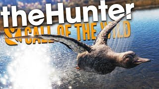 The Hunter Call Of The Wild | DUCK & COVER!!