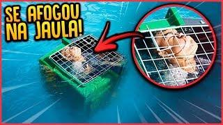 Baixar ANÃO SE AFOGOU NA JAULA NA PISCINA!! - TROLLANDO REZENDE [ REZENDE EVIL ]