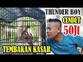 Cendet Bojonegoro Tunder Boy Milik Nurdin Cendet Tunder Boy Cendet Bojonegoro  Mp3 - Mp4 Download