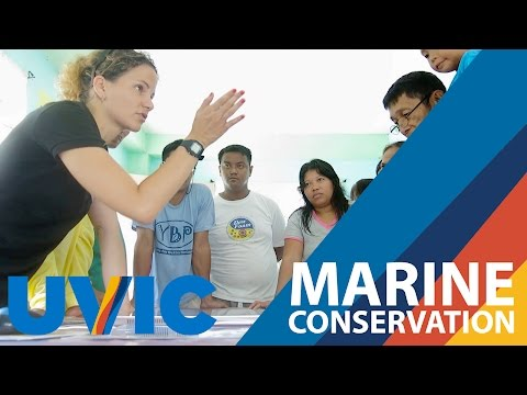 Marine conservation in the Philippines
