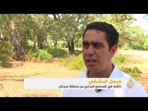 موجة حرائق للغابات بمحافظات شمال تونس  - نشر قبل 15 دقيقة