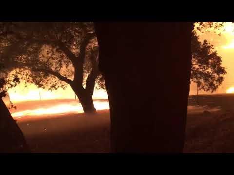 St Helena Firestorm