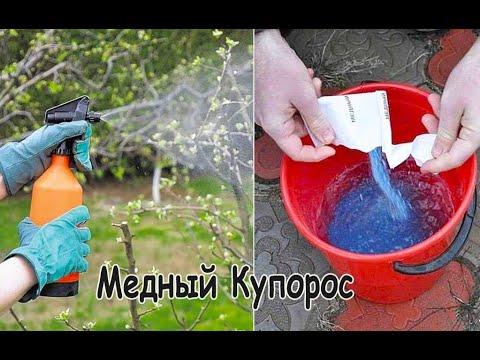 Вопрос: Медный купорос, что можно обрабатывать Можно обработать деревья?
