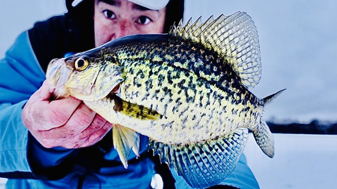 How to FIND and CATCH Crappie - Ice Fishing With Frostbite Tungsten Jigs in Deep Water