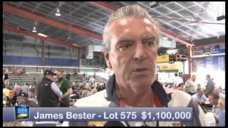 2015 Magic Millions National Broodmare Sale - Day 1 Review