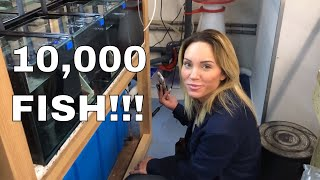 Download Video 10,000 FISH! One Building! (Ft. Mindi's Coral Reef) MP3 3GP MP4