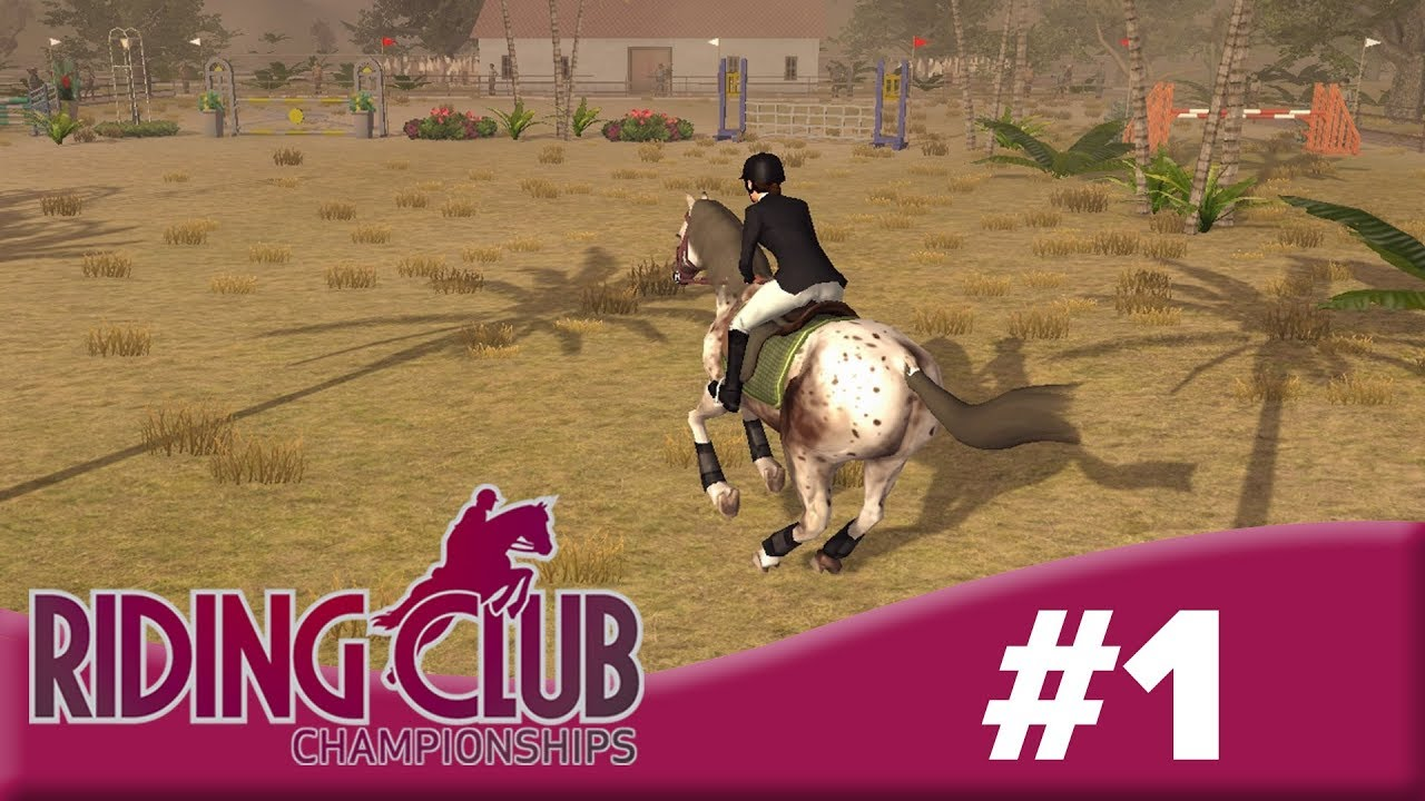 Top 17 Horse Games - Everyday Horsing