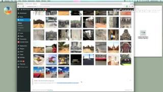 видео WP Media Folder v4.5.7 - wordpress расширение ⋆ Все для веб-мастера - программы и скрипты