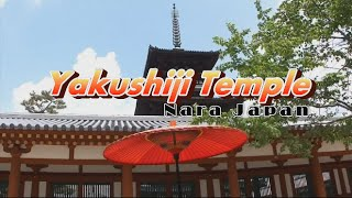ライトアップされた世界遺産が神秘的! 薬師寺 奈良県 興福寺とともに法相宗大本山に位置づけ  日本、奈良42 thumbnail