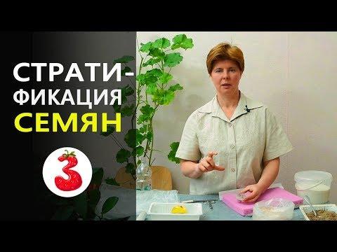 Вопрос: Где найти справочники по условиям проращивания конкретных семян?