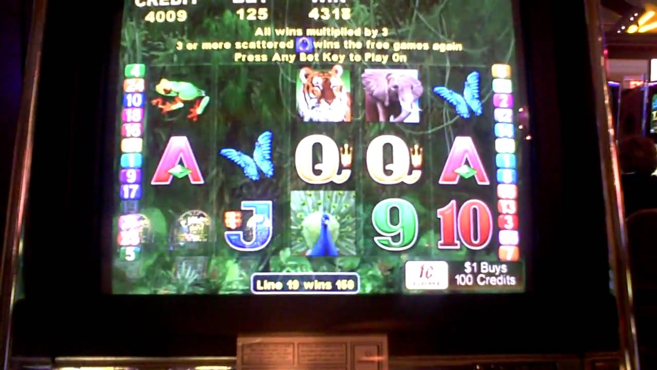 Peacock Slot Machine