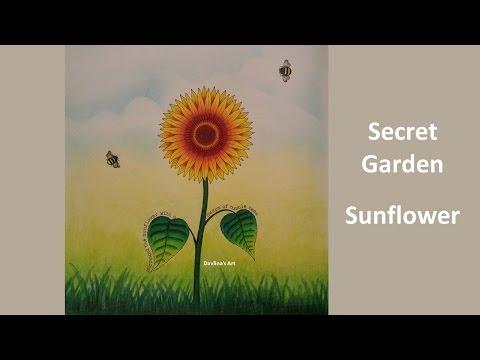 Sunflower | Secret Garden Coloring book by johanna basford