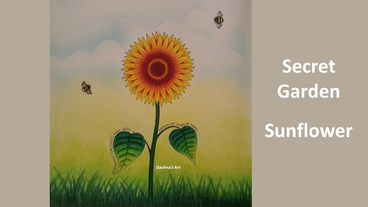 Sunflower Secret Garden Coloring book by johanna basford