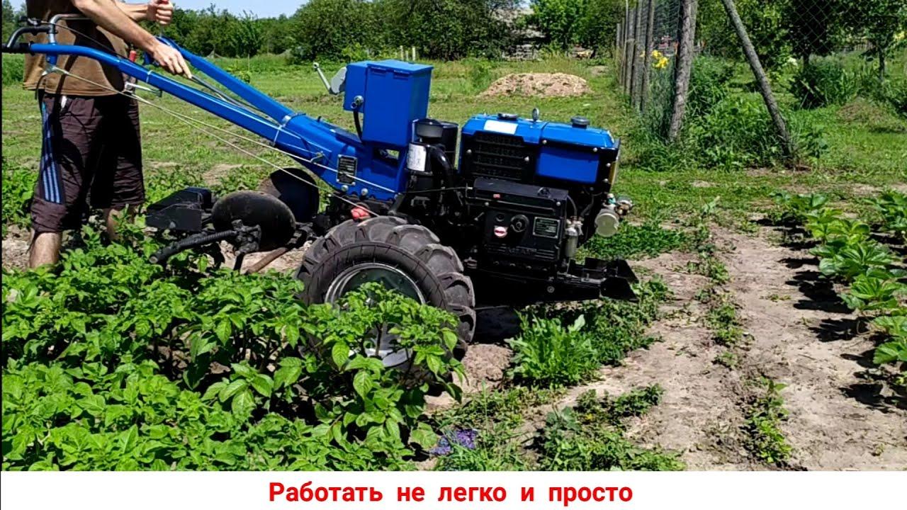 Работа мотоблоком в огороде видео. - Cvetochki-ulyanovsk.ru
