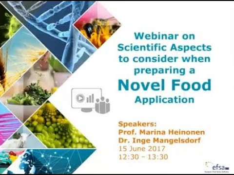 Scientific aspects to consider when preparing a novel food application