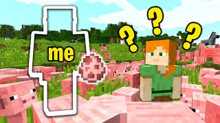 Invisibility trolling Noob444 on my minecraft server...