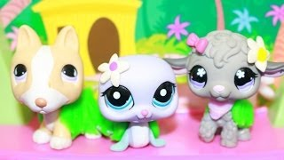 Lps Go To Hawaii Littlest Pet Shop Dance The Hula Play-doh Grass Skirts