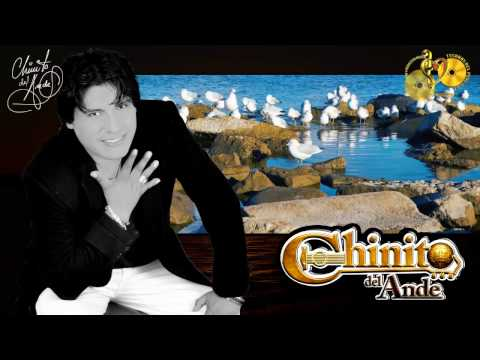 descargar Musica mp3 de chinito del ande