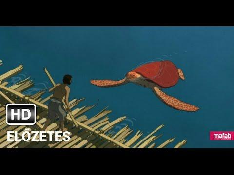 A vörös teknős Online Teljes Film Magyar Szinkronnal HD Magyarul