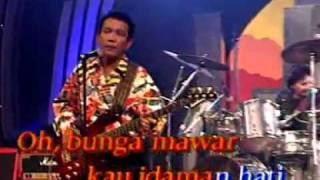 Lagu Nostangia Bunga Mawar - The Mercy's Mp3