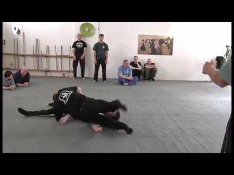 Systema - Russian Martial Art by Alexandr Solovyev . Protection . Lever . Wave . Support . Lesson 1