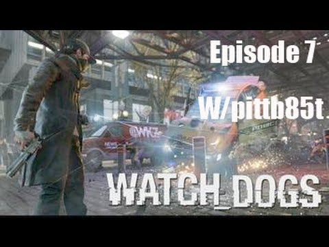 Bellwether Watch Dogs