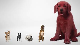 Clifford The Big Ręd Dog First Look Paramount Pictures 720p