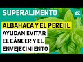 Súper Alimentos |La albahaca y el perejil ayudan evitar el cáncer y el envejecimiento