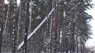 Вырубка деревьев на тропе здоровья беспокоит горожан(Тропе здоровья угрожает нашествие жуков-короедов. С таким заявлением к нам в редакцию обратились жители..., 2013-12-26T04:18:48.000Z)