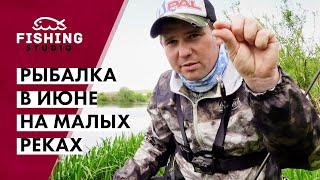 Где как и на что ловить голавля в начале лета Рыбалка в июне на малых реках ВихровLIFE