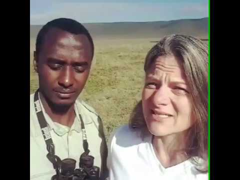 Tanzania Tour Guide Misinterpreting What Tourist Says