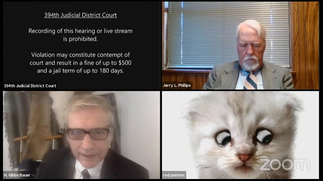 How to use the lawyer cat Zoom filter everyone's talking about