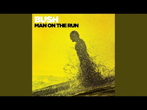 Man On the Run